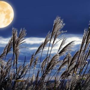 【遠隔レイキセッションのお知らせ】中秋節満月の日に行います!