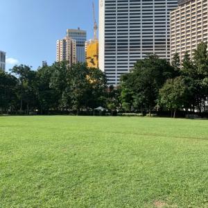今日のビクトリア公園にはたくさんちびっこが遊びに来てたよ!