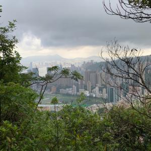 香港トレイルセクション4と黄皮