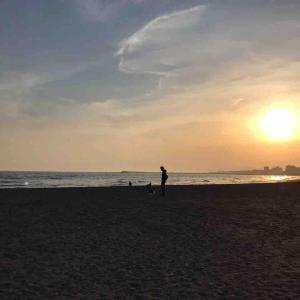 茅ヶ崎の海岸散歩(4月の夕べ)