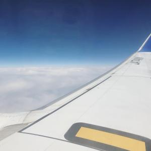 飛行機乗ってむすびのむさしと、トラブルからのトラブル
