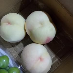 でっかい桃三つ550円!!