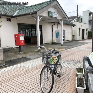猫さん達のおやつタイム ~7月の松山庭園美術館・その1~