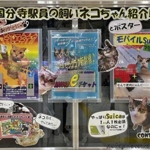 西国分寺駅の猫ポスター