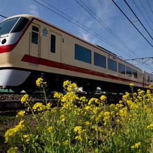 ONE-shot 352 黄色い花道