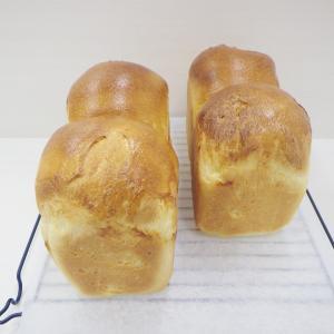 山食パン、バターロール、フランスあんパン、ソーセージエッグ、ヴァーノチュカ、フォカッチャ、他。