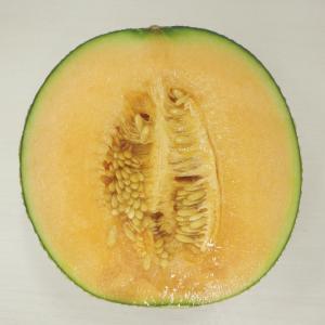 何食べ18巻よりわさび風味の胡瓜の浅漬け、パン・オ・レ生地で総菜パン2種