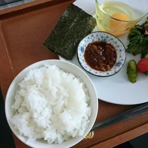 島根県隠岐発・海士の本気米「きぬむすめ」