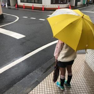愛媛新聞カルチャースクールは4月も臨時休講となりました