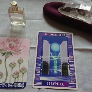 宇宙の月 ~ セレナイト・蓮の花の中の宝石