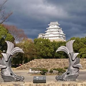 姫路城の世界遺産登録記念日 と チーズケーキ