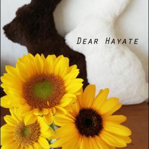 Dear Hayate