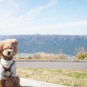 2019 秋の家族旅行① 大観峰