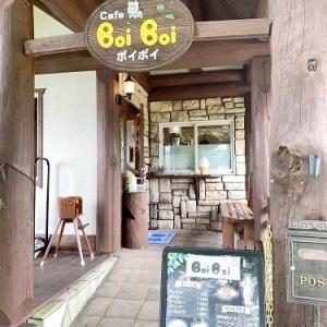 自然の中のカフェでランチ