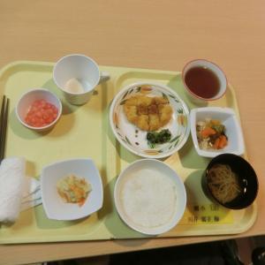 喜久寿苑七夕昼食