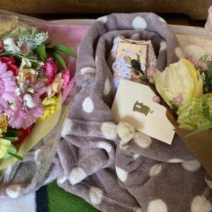 【ミル2回目の月命日】Twitterのフォロワーさんから花束が届いた!昔の動画も