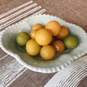 秋の果実 フルーツほおずきとナイアガラ