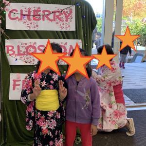 日本の文化紹介@NZの幼稚園