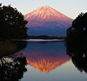 絶景!!田貫湖の赤富士・精進湖の逆さ富士