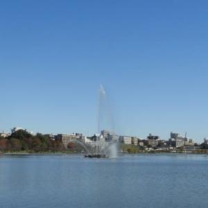 千波湖の水鳥たちと歴史観の銀杏並木