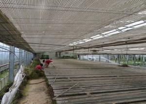 長野農場 準備完了!!!