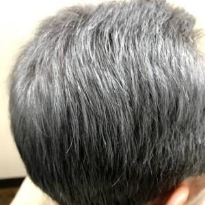 白髪をグレーにぼかして染める。べりーのニューカラー