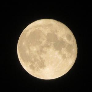 【ファスティング3日間終了後♬】16日目。満月を越えてデトックス期に。