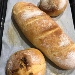 パンの記録