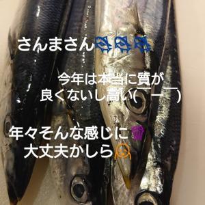 大漁を!!