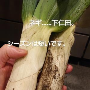 下仁田!!