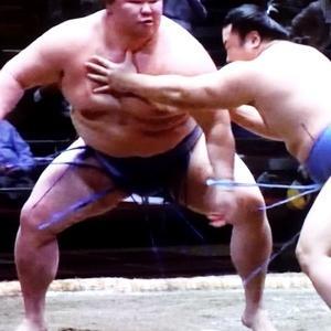 世代交代を感じた大相撲大会