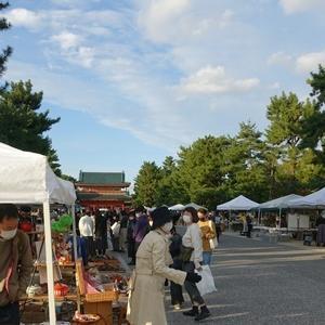 京都の町に賑わいが戻りつつある