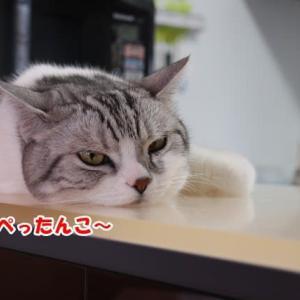 暑すぎる~☆
