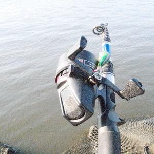 本日のド外道捕獲ペナルティ釣行について。
