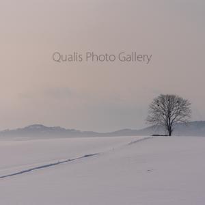 美瑛・丘の上の孤独