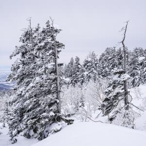 十勝岳・天空の真冬