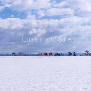 最後の冬景色