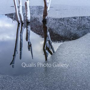 氷と雪と沈黙の世界