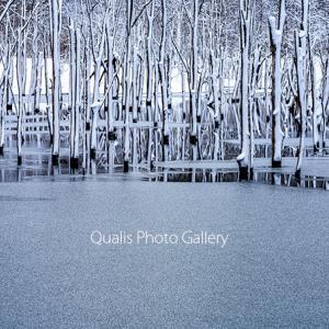 雪と氷の造形・・・