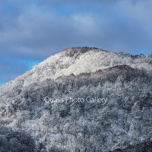 雪の丘に魅せられ・・・