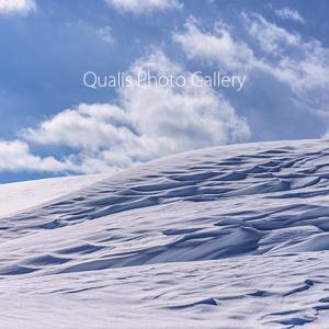 風が魅せる雪の造形・・・