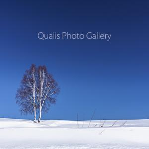 白い雪と青い空のカタチ・・・