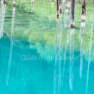 美瑛・水の鏡の世界・・・