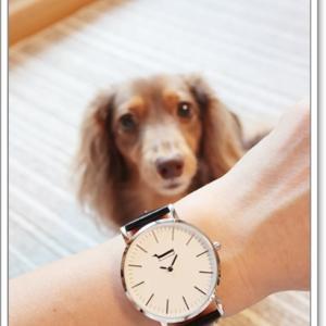 ダックスモチーフの腕時計