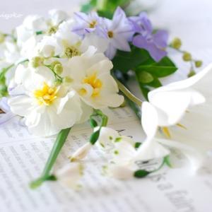 パーソナルカラー診断とお花の相乗効果