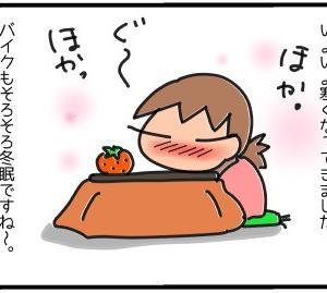 バイクもそろそろ冬眠なのに〜(^_^;)