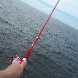 ほとんど坊ちゃんが釣りました。