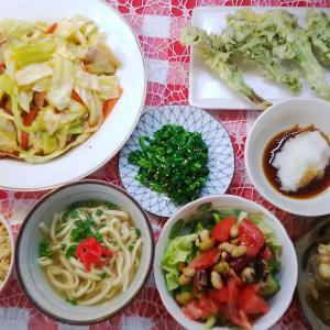菜の花の天ぷらとイカ軟骨と大根のトロトロ煮でお昼ご飯。