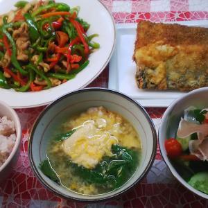 鯖フライと青椒肉絲でお昼ご飯。