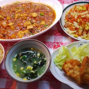 カジキのチーズ挟みカツと青パパイヤ麻婆豆腐と白ゴーヤーでお昼ご飯。